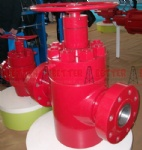 Camaron Gate Valves